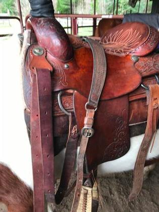Buy & Sell Horse / Equestrian Equipment - Beaumont TX